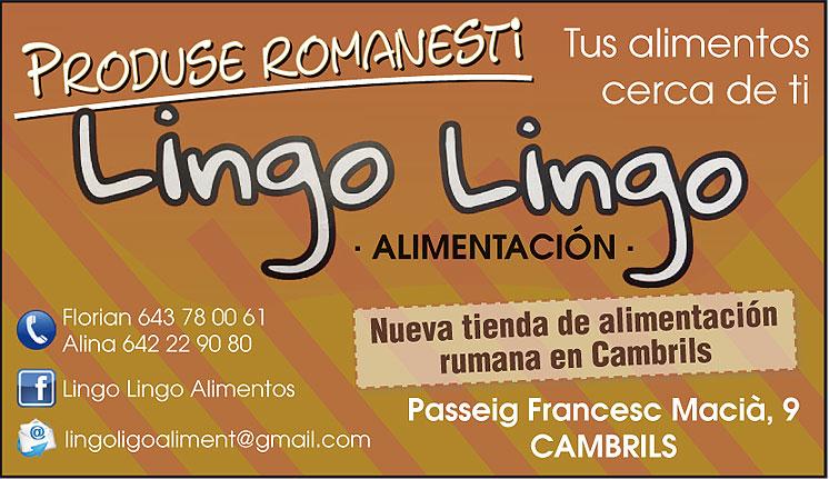 LINGO LINGO ALIMENTACIÓN